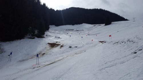 Lyžiarske preteky 2.3.2019